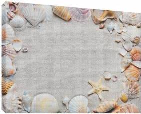 Scoici pe nisip 5 - Tablou canvas - 52x70 cm Tablouri