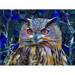 Tablou Canvas Abstract Bufnita Pasare 80 x 60 cm Multicolor