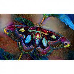 Tablou Canvas Abstract Fluture 80 x 50 cm Multicolor