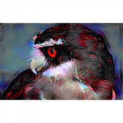Tablou Canvas Abstract Pasare Bufnita 80 x 50 cm Multicolor