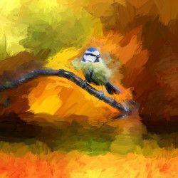 Tablou Canvas Abstract Pasare Pitigoi 70 x 70 cm Multicolor