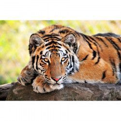 Tablou Canvas Animal Tigru 90 x 60 cm Rama lemn Multicolor