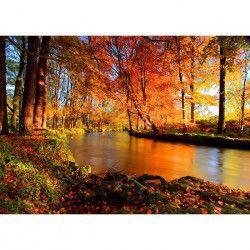 Tablou Canvas Padure Toamna 1790 70 x 50 cm Rama lemn Multicolor Tablouri