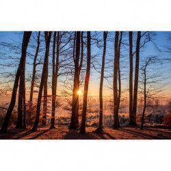 Tablou Canvas Apus de soare 396 80 x 50 cm Rama lemn Multicolor Tablouri