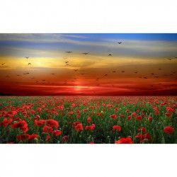 Tablou Canvas Apus de soare Camp de maci Pasari 80 x 50 cm Multicolor