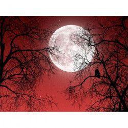 Tablou Canvas De vorba cu Luna 80 x 60 cm Rama lemn Multicolor Tablouri