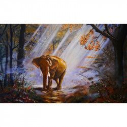Tablou Canvas Elefant Raze de lumina 80 x 50 cm Multicolor