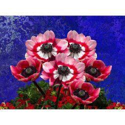 Tablou Canvas Flori 269 80 x 60 cm Rama lemn Multicolor Tablouri