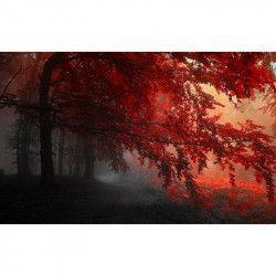 Tablou Canvas Frunze rosii 90 x 50 cm Rama lemn Multicolor Tablouri