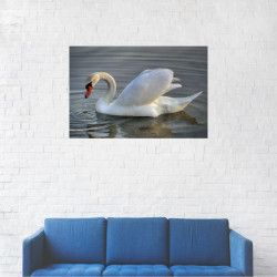 Tablou Canvas Lebada pe lac 20 x 30 cm Tablouri