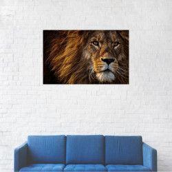 Tablou Canvas Leu batran 20 x 30 cm Tablouri
