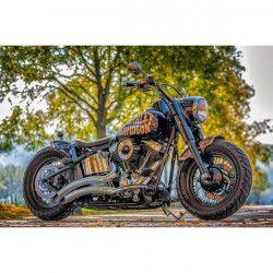 Tablou Canvas Motocicleta Harley Davidson 60 x 40 cm Rama lemn Multicolor Tablouri