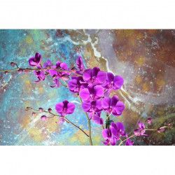 Tablou Canvas Orhidee 351 80 x 50 cm Rama lemn Multicolor Tablouri