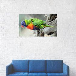 Tablou Canvas Pasarea Loriini multicolora 40 x 70 cm Tablouri