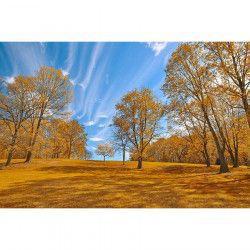 Tablou Canvas Peisaj de toamna 950 90 x 60 cm Rama lemn Multicolor Tablouri