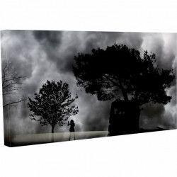 Tablou Canvas Peisaj Furtuna Masini Natura 60 x 90 cm Tablouri