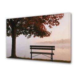 Tablou Canvas Premium Peisaj Multicolor Banca langa copac toamna Decoratiuni Moderne pentru Casa 80 x 160 cm Tablouri