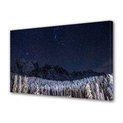 Tablou Canvas Premium Peisaj Multicolor Brazi acoperiti de zapada noaptea Decoratiuni Moderne pentru Casa 80 x 160 cm Tablouri