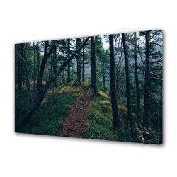 Tablou Canvas Premium Peisaj Multicolor Carare prin padure Decoratiuni Moderne pentru Casa 80 x 160 cm Tablouri