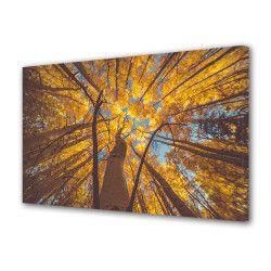 Tablou Canvas Premium Peisaj Multicolor Copac galben vazut de jos Decoratiuni Moderne pentru Casa 80 x 160 cm Tablouri