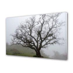 Tablou Canvas Premium Peisaj Multicolor Copac in ceata Decoratiuni Moderne pentru Casa 80 x 160 cm Tablouri