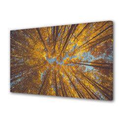 Tablou Canvas Premium Peisaj Multicolor Copaci galbeni vazuti de jos Decoratiuni Moderne pentru Casa 80 x 160 cm Tablouri