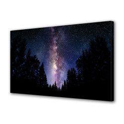 Tablou Canvas Premium Peisaj Multicolor Peisaj cu brazi si stele noaptea Decoratiuni Moderne pentru Casa 80 x 160 cm Tablouri