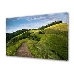 Tablou Canvas Premium Peisaj Multicolor Drum pe deal Decoratiuni Moderne pentru Casa 80 x 160 cm Tablouri
