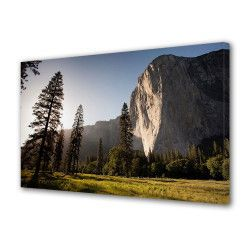 Tablou Canvas Premium Peisaj Multicolor Peisaj luminos cu stanca si brazi Decoratiuni Moderne pentru Casa 80 x 160 cm Tablouri