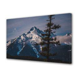 Tablou Canvas Premium Peisaj Multicolor Munte acoperit cu zapada si un brad Decoratiuni Moderne pentru Casa 80 x 160 cm Tablouri