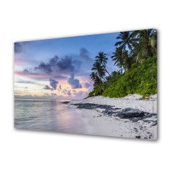 Tablou Canvas Premium Peisaj Multicolor Peisaj plaja pustie Decoratiuni Moderne pentru Casa 80 x 160 cm Tablouri