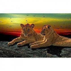 Tablou Canvas Pui de leu 80 x 50 cm Rama lemn Multicolor Tablouri
