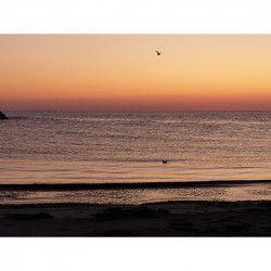 Tablou Canvas Rasarit de soare Plaja 80 x 60 cm Multicolor