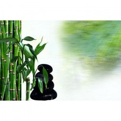 Tablou Canvas Relaxare Bambus Zen 80 x 50 cm Rama lemn Multicolor Tablouri