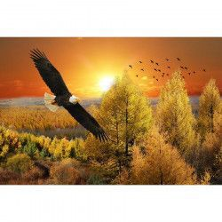 Tablou Canvas Toamna Vultur 90 x 60 cm Multicolor