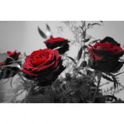 Tablou Canvas Trandafiri rosii 2 90 x 60 cm Rama lemn Multicolor Tablouri