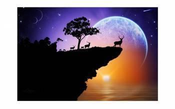 Tablou Canvas Luna si Cerbii - 95x65cm Tablouri
