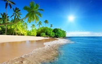 Tablou Canvas Plaja Palmieri si Mare 95x65cm Tablouri