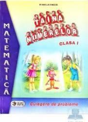 Taina numerelor clasa I - Mihaela Singer - Mate - Culegere