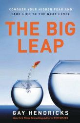 The Big Leap Conquer Your Hidden Fear and Take Life to the Next Level