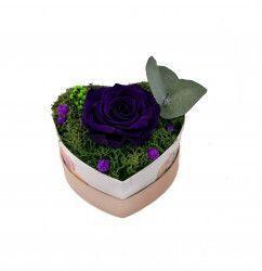 Trandafir Criogenat Wide Flowers mov pe pat de muschi stabilizat intr-o cutie in forma de inima