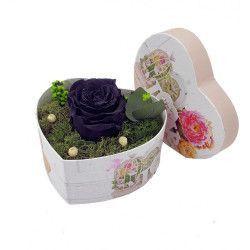 Trandafir Criogenat Wide Flowers negru pe pat de muschi stabilizat intr-o cutie in forma de inima