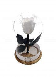 Trandafir Natural Criogenat Wide Flowers alb pe pat de petale in cupola mica de sticla